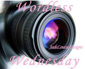 Wordless-Wednesday-button