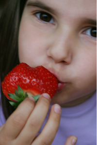Post image for Kids Fruits and Vegetables: Tips for Getting Them to Exist in Harmony Guest post