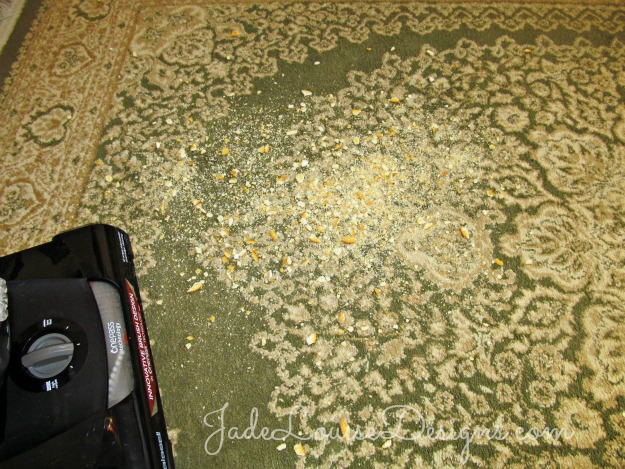 Cleaning Tips Save Time Vacuuming With Bissell Cleanview