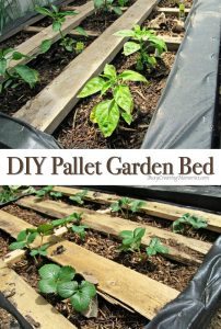 DIY Pallet Garden; How to make Raised Wood Pallet Garden Bed