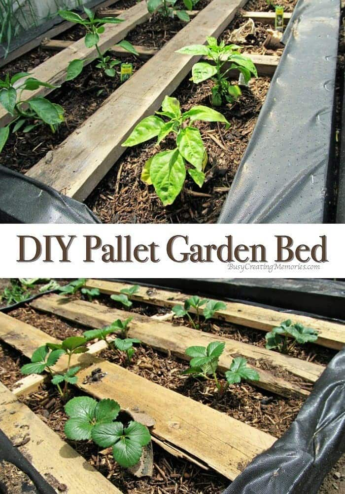 Diy pallet garden how to make raised wood pallet garden bed for Gardening using pallets