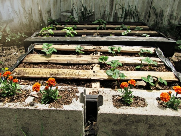 Diy pallet garden how to make raised wood pallet garden bed for Pallet veggie garden