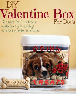 DIY Valentine Box for Dogs | Simple Dog Treat box craft