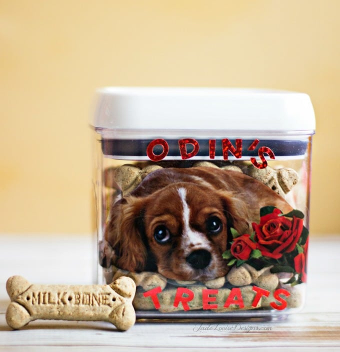 DIY Valentine Box for Dogs | Simple Dog Treat box craft #MilkBoneLove #SayitwithMilkBone