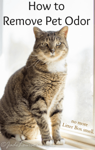 How to remove Litter box odor and teach responsibility using Litter Genie