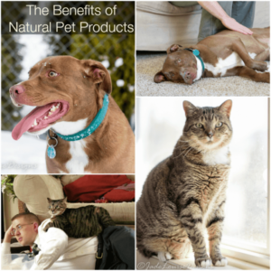 Benefits of Natural pet products with Only Natural Pet #PawNatural