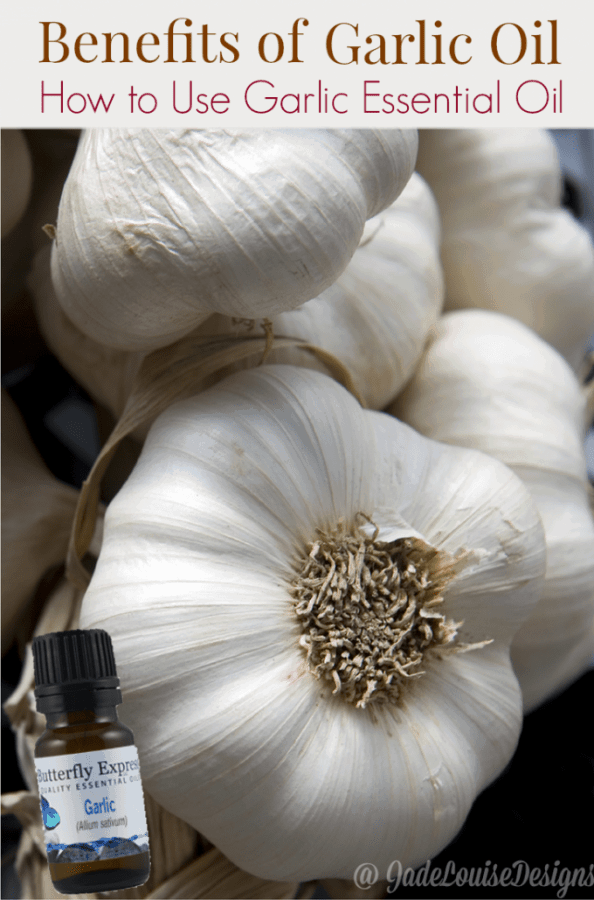 Benefits of Garlic Oil and how to use Garlic Essential Oil