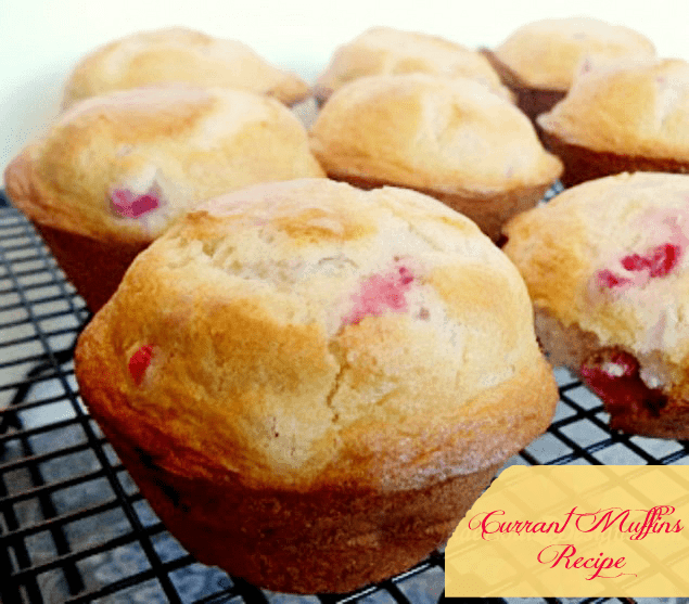 Currant Muffins Recipe; a Family Favorite Breakfast Recipe
