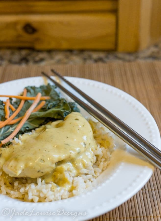 Easy Thai Green Curry Chicken Recipe plus Nutrish for cats Giveaway #NutrishforCats