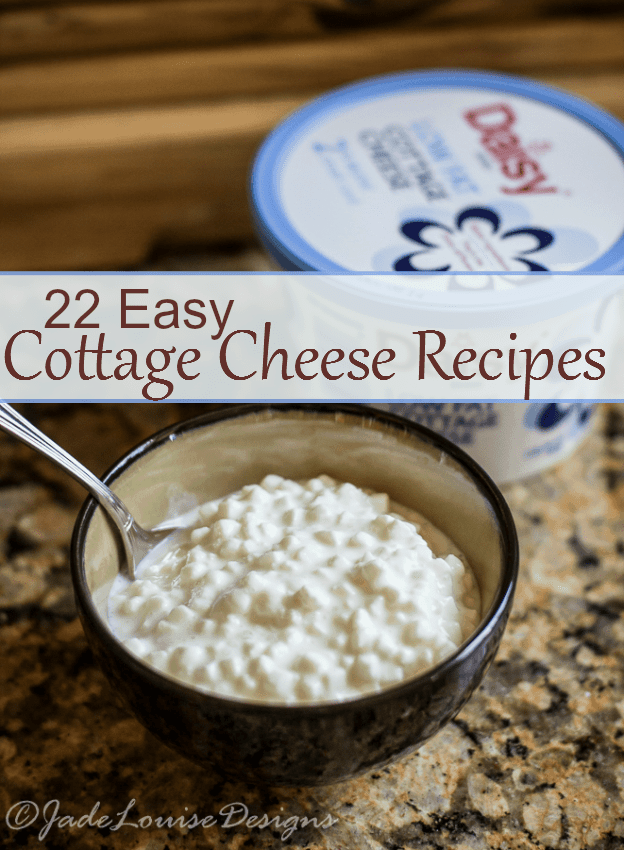 22 Perfect Daisy Cottage Cheese recipes