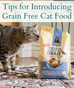 Tips for introducing Grain free cat food!