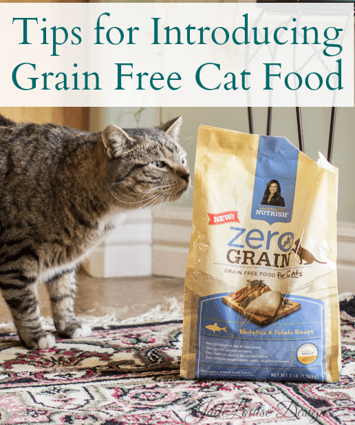 Tips for introducing Grain free cat food! Rachael Ray Nutrish Cat food #NutrishZeroGrain
