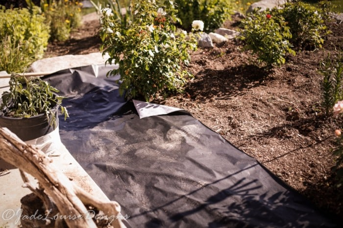 DIY Weed Barrier for a beautiful Garden Bed