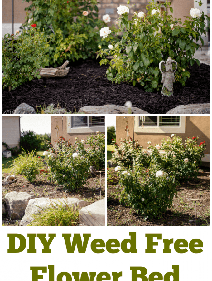 How to get a Weed Free Flower Bed
