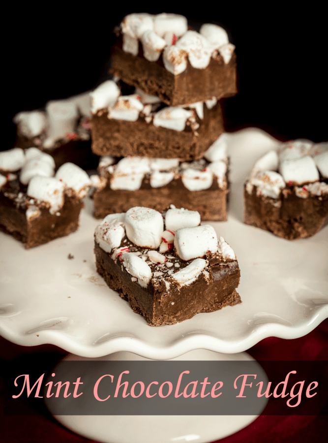 Easy Mint Chocolate Fudge from Pudding to Sweeten the Season