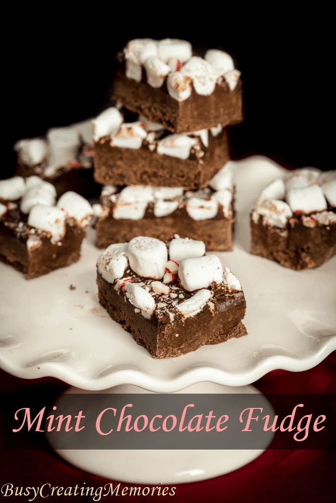 Easy Mint Chocolate Fudge from Pudding