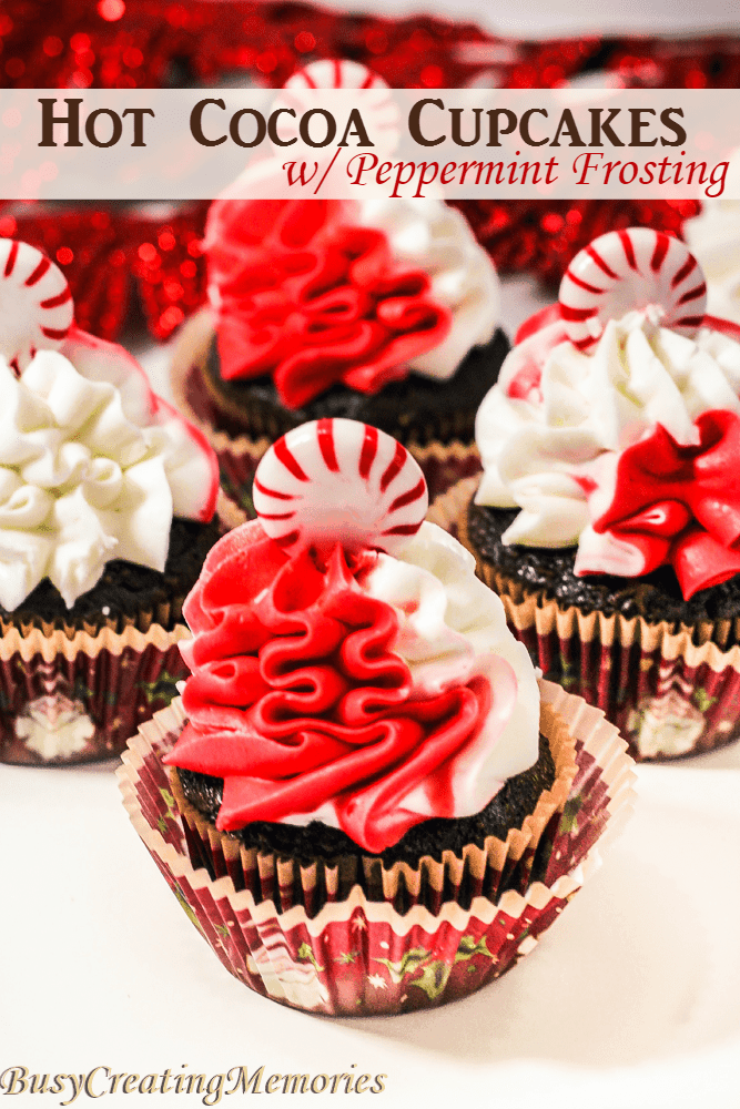 Hot Cocoa Cupcake with Peppermint Frosting