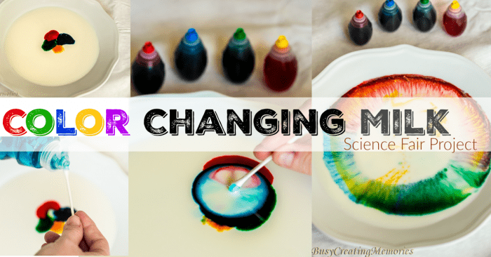 Color Changing Milk Science Fair Project Idea