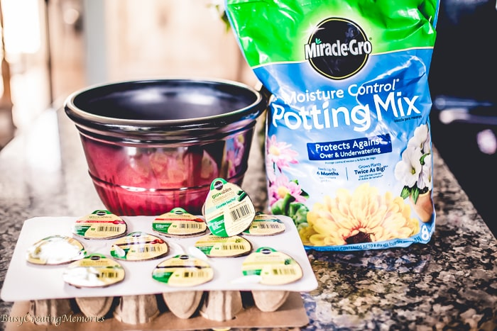 Gardening with Kids made easy with Miracle-Gro Gro-ables
