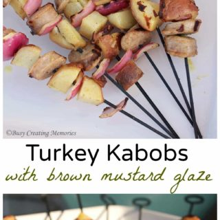 Turkey kabobs with a tangy brown mustard glaze