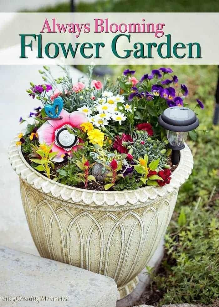 Always Blooming Flower Garden w/ blossoms all summer long