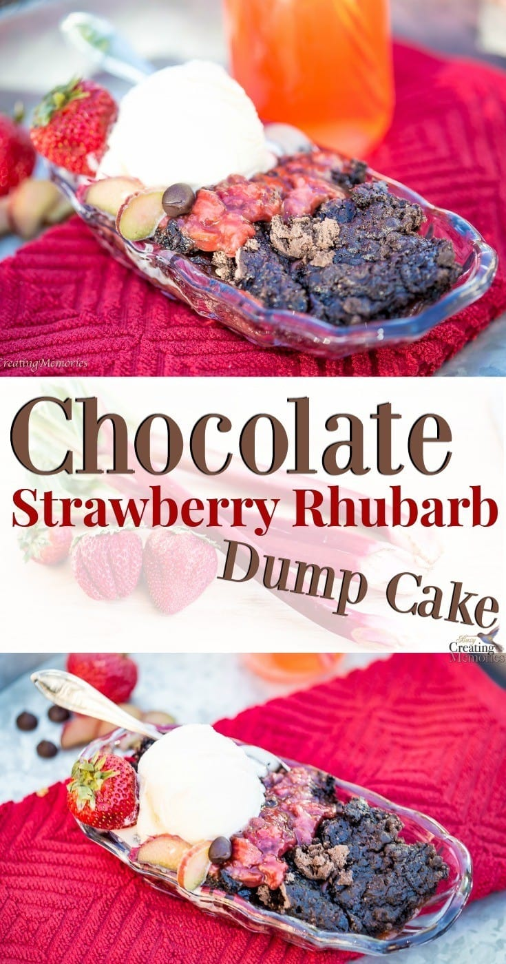 The Best Chocolate Strawberry Rhubarb Dump Cake dessert recipe