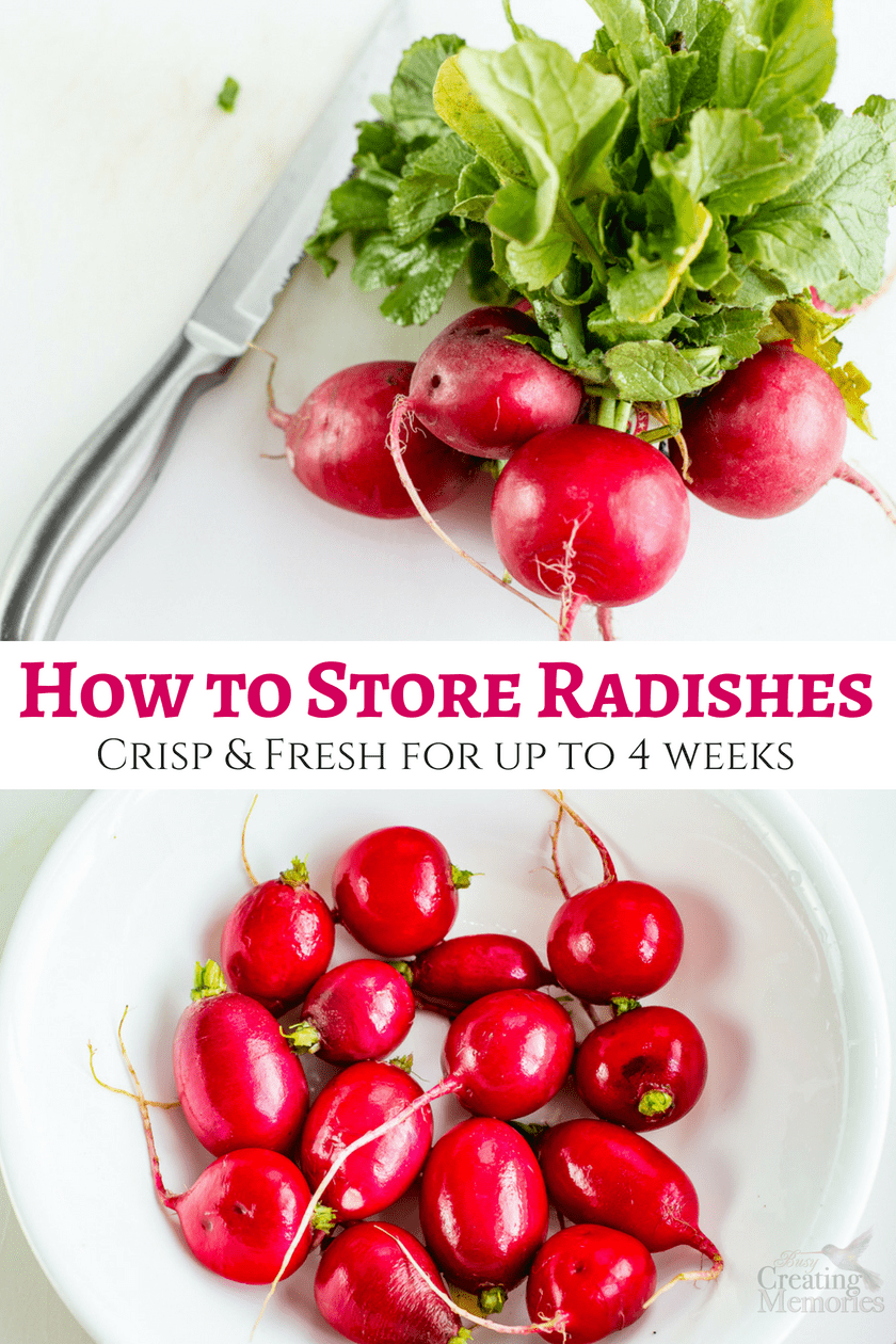 How to Store Radishes to keep them fresh and crisp for up to 4 weeks