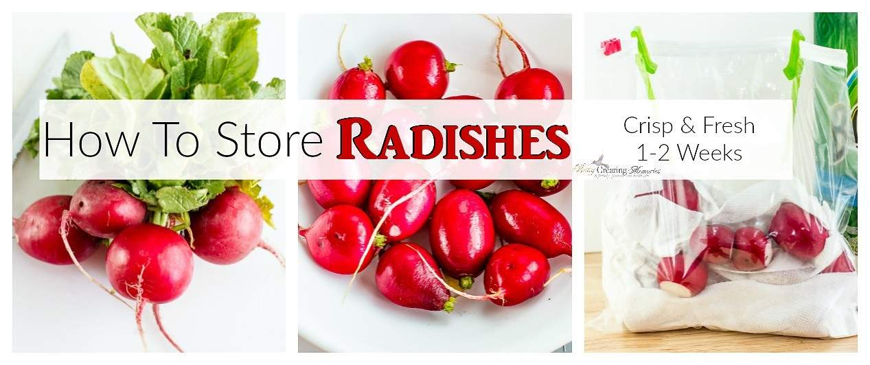 How to Store Radishes to keep them Fresh and Crisp.