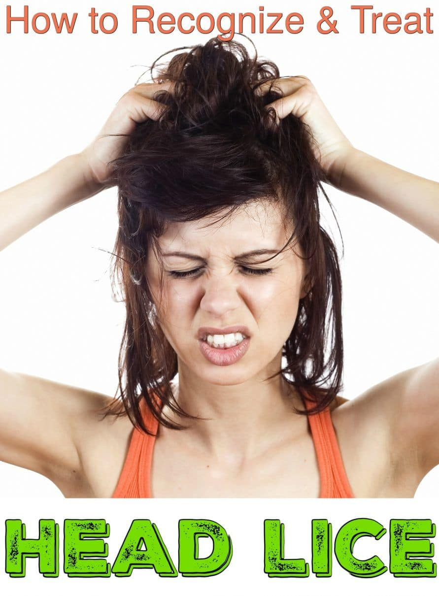 Head Lice Help Guide How To Get Rid Of Head Lice