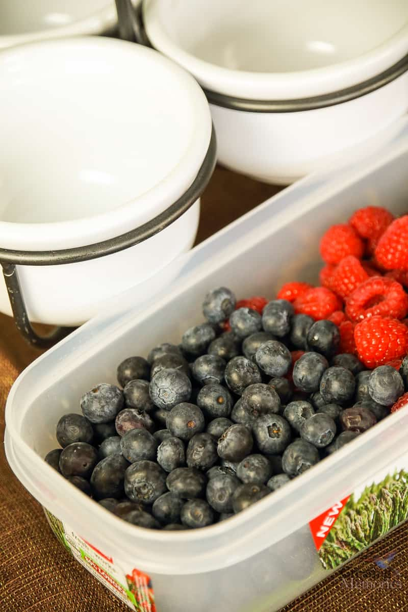 How to Keep Fruit Fresh Longer & save your grocery budget!