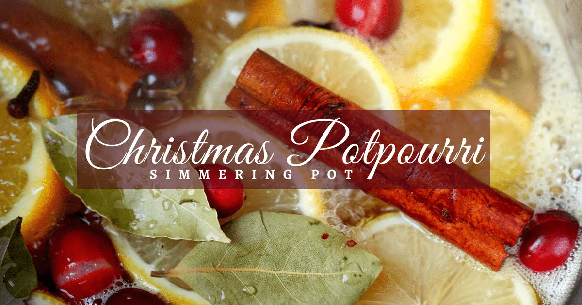 Homemade Christmas Potpourri Simmer Pot Recipe Natural Air Freshener