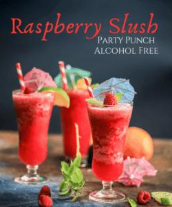 Tropical Raspberry Luscious Slush Punch Recipe